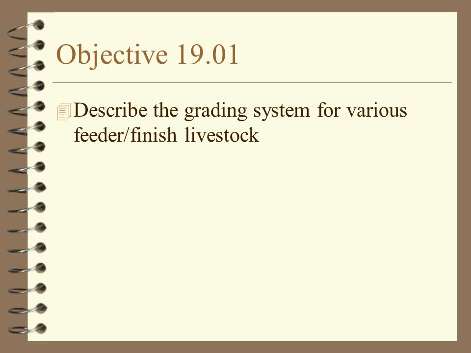Objective 19.01 Describe the grading system for various feeder/finish livestock