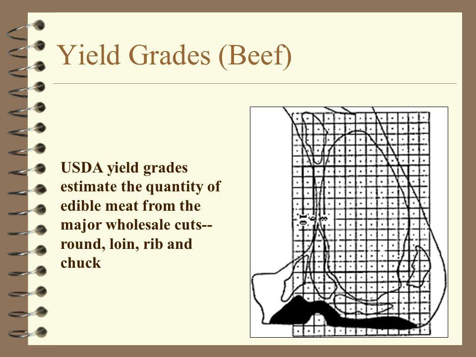 Yield Grades (Beef) USDA yield grades estimate the quantity of edible meat from the major wholesale cuts--round, loin, rib and chuck.