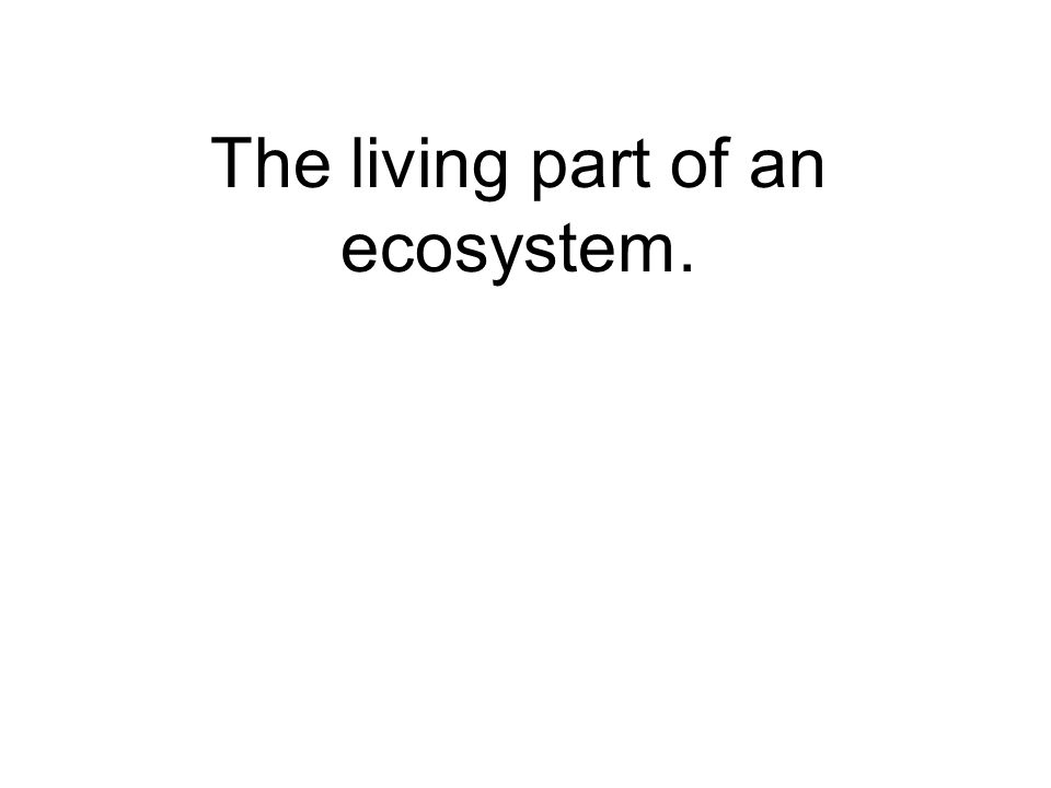 The living part of an ecosystem.
