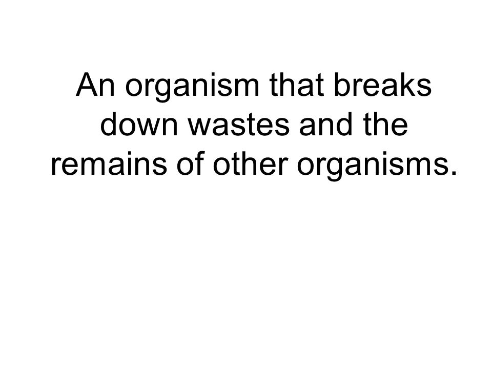 An organism that breaks down wastes and the remains of other organisms.