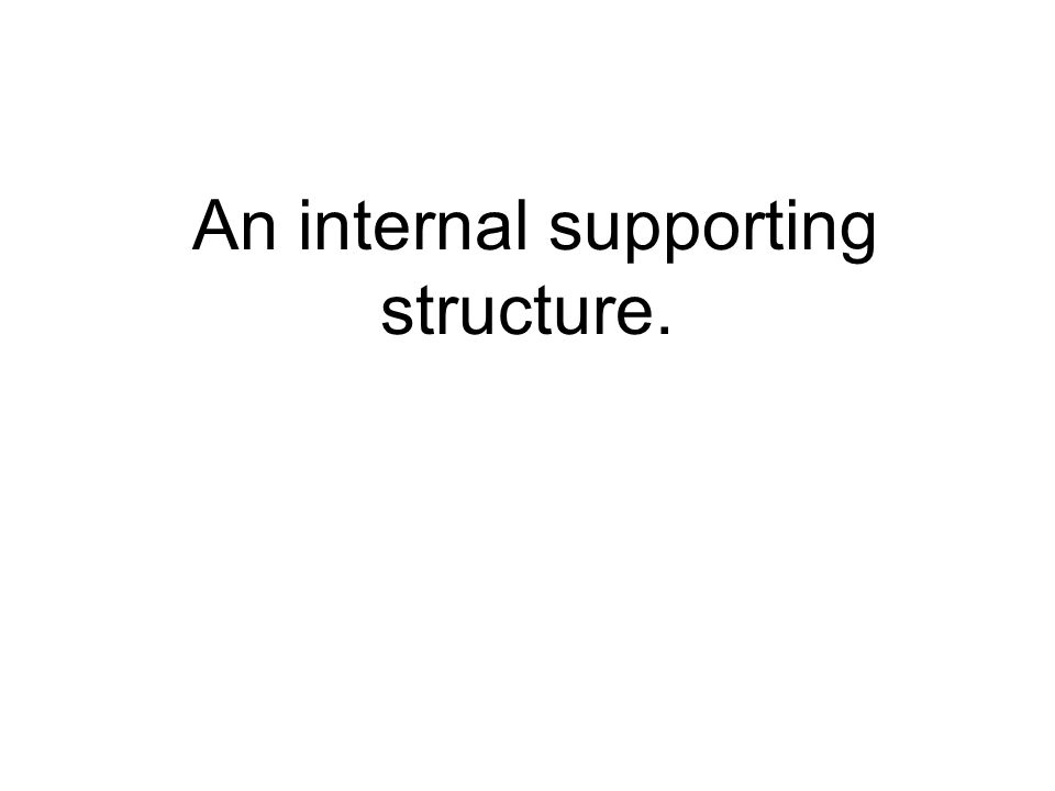 An internal supporting structure.
