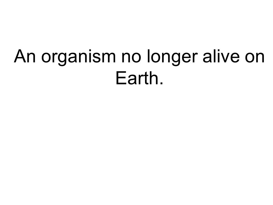 An organism no longer alive on Earth.