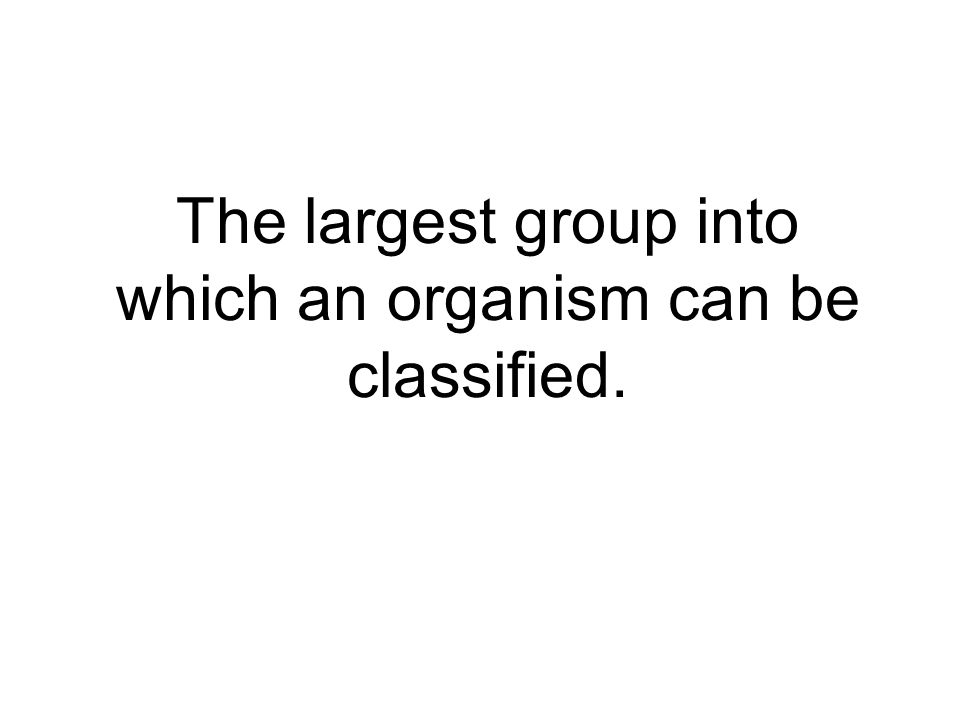 The largest group into which an organism can be classified.