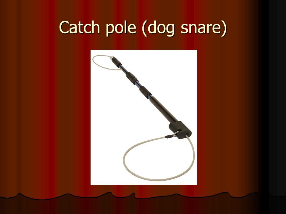Catch pole (dog snare)