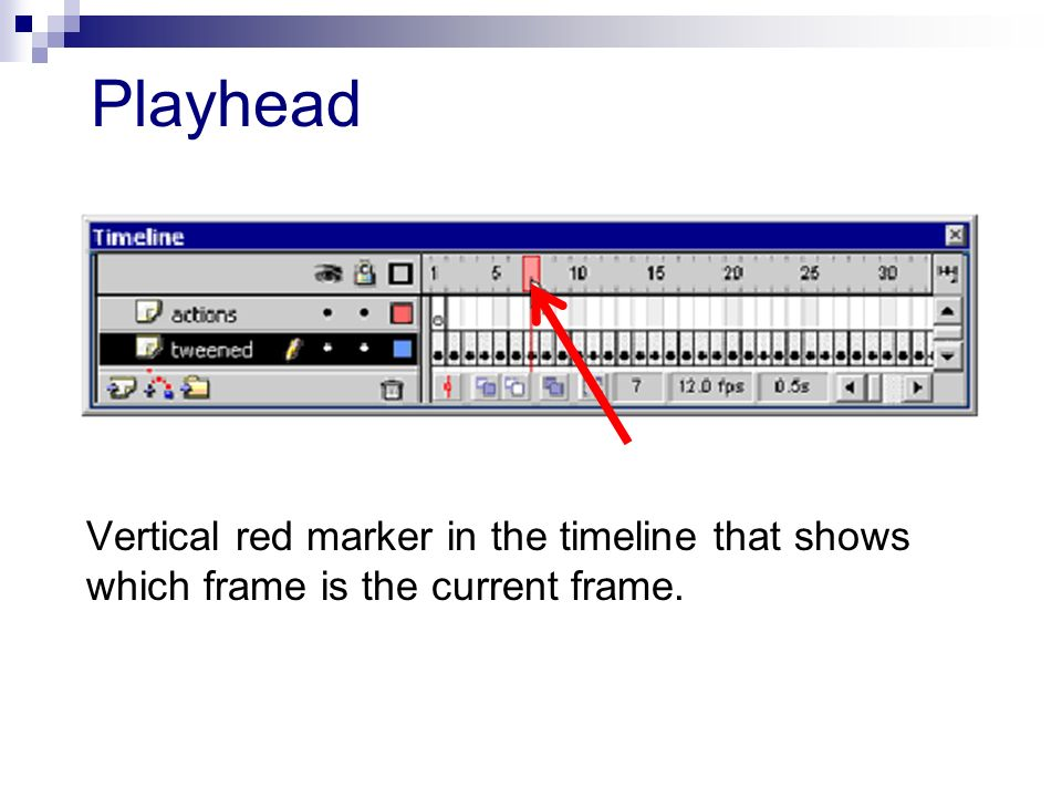 Playhead Vertical red marker in the timeline that shows which frame is the current frame.