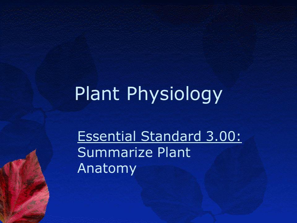 Essential Standard 3.00: Summarize Plant Anatomy