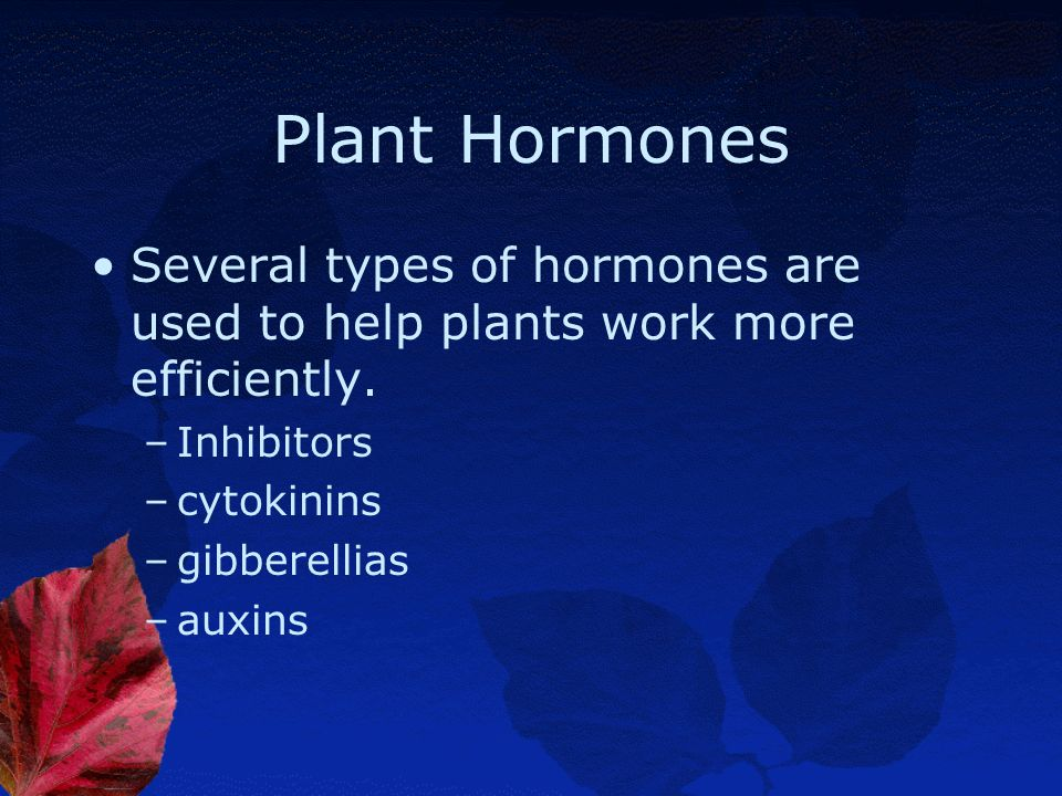 Plant Hormones Several types of hormones are used to help plants work more efficiently. Inhibitors.