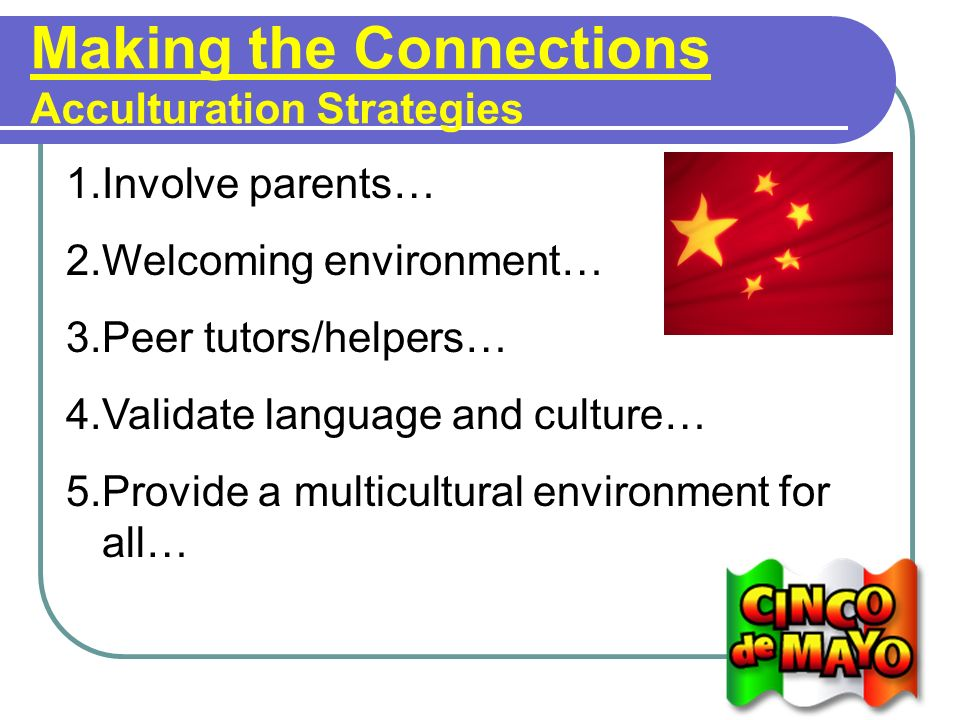 Making the Connections Acculturation Strategies