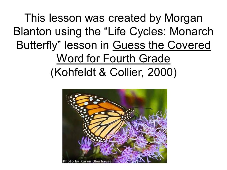This lesson was created by Morgan Blanton using the Life Cycles: Monarch Butterfly lesson in Guess the Covered Word for Fourth Grade