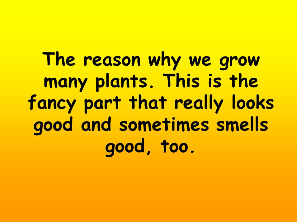 The reason why we grow many plants