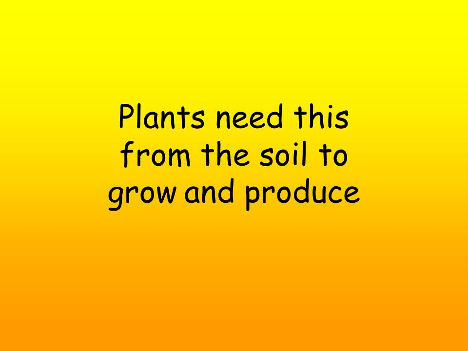 Plants need this from the soil to grow and produce