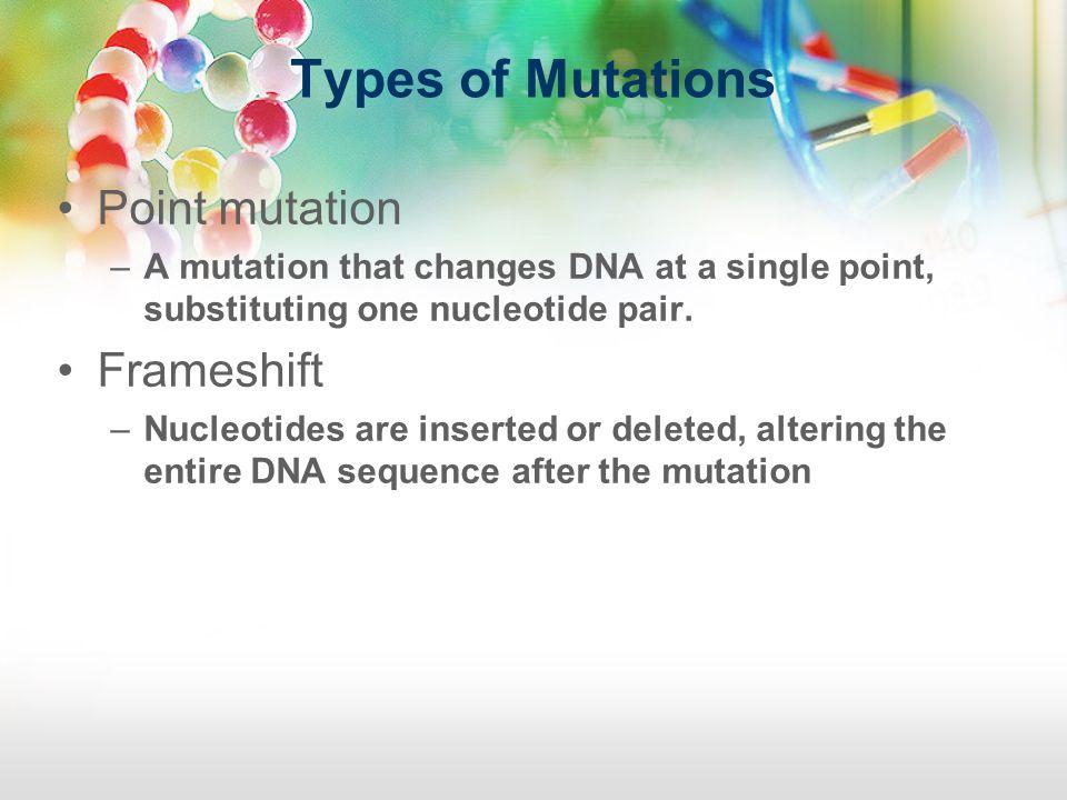Types of Mutations Point mutation Frameshift