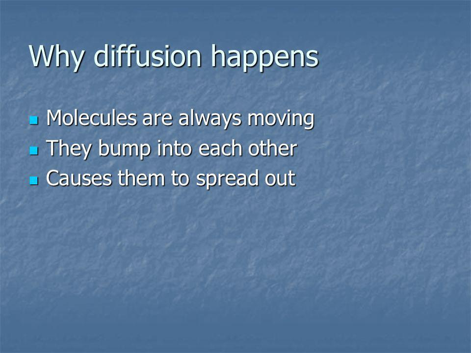 Why diffusion happens Molecules are always moving