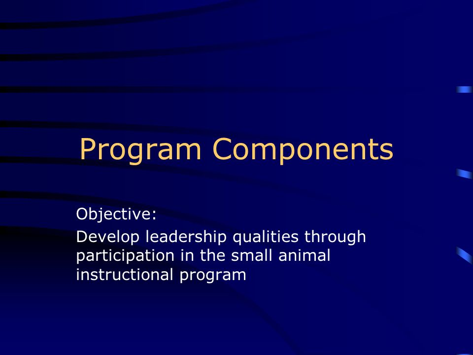 Program Components Objective: