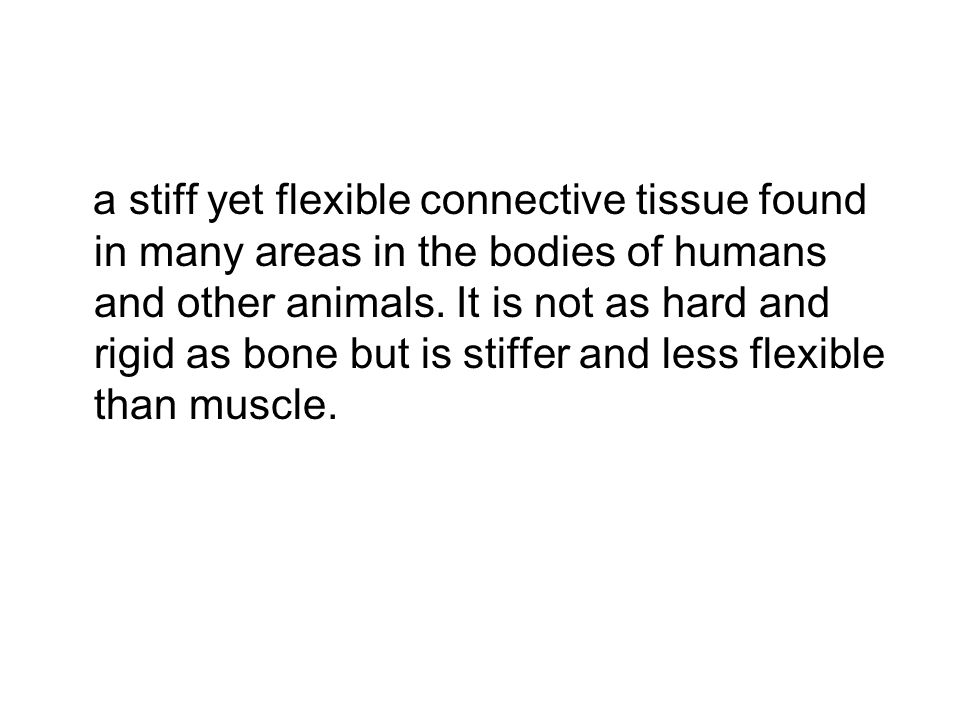 a stiff yet flexible connective tissue found in many areas in the bodies of humans and other animals.