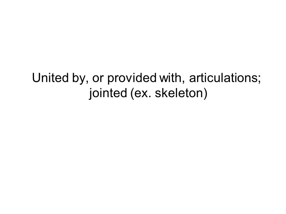 United by, or provided with, articulations; jointed (ex. skeleton)