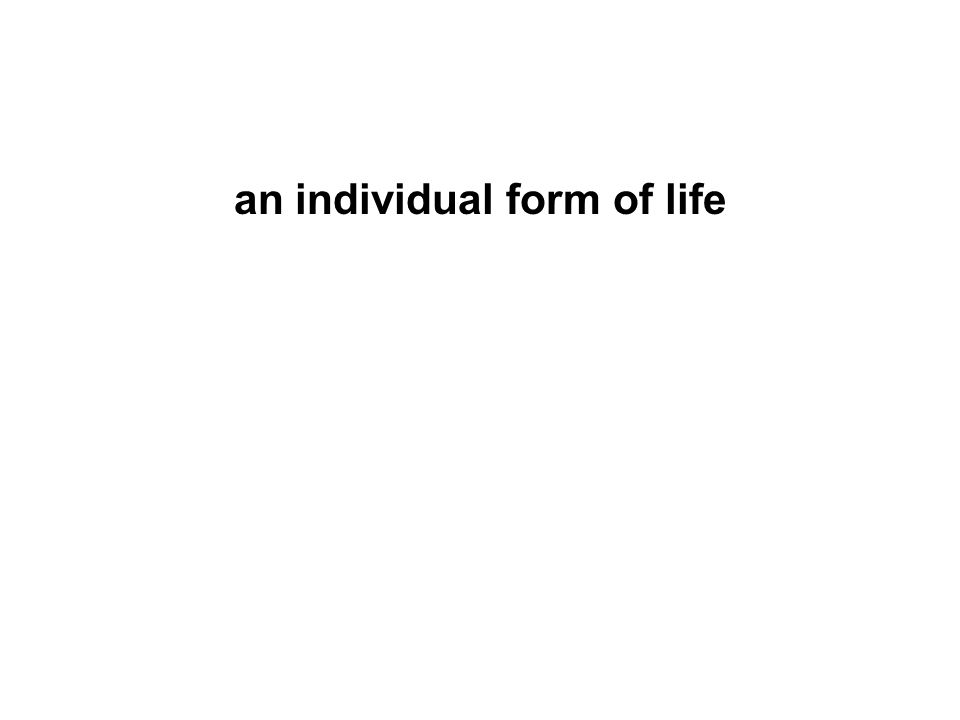 an individual form of life