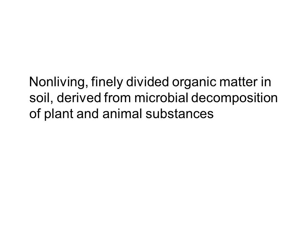 Nonliving, finely divided organic matter in soil, derived from microbial decomposition of plant and animal substances