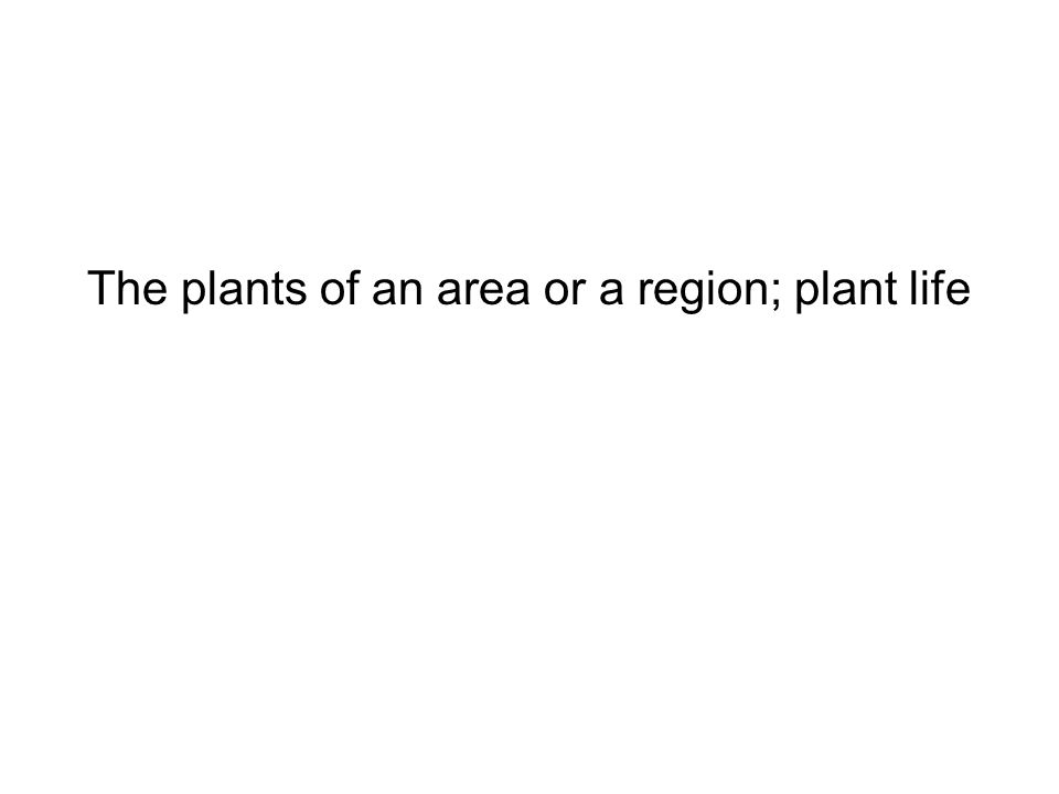 The plants of an area or a region; plant life