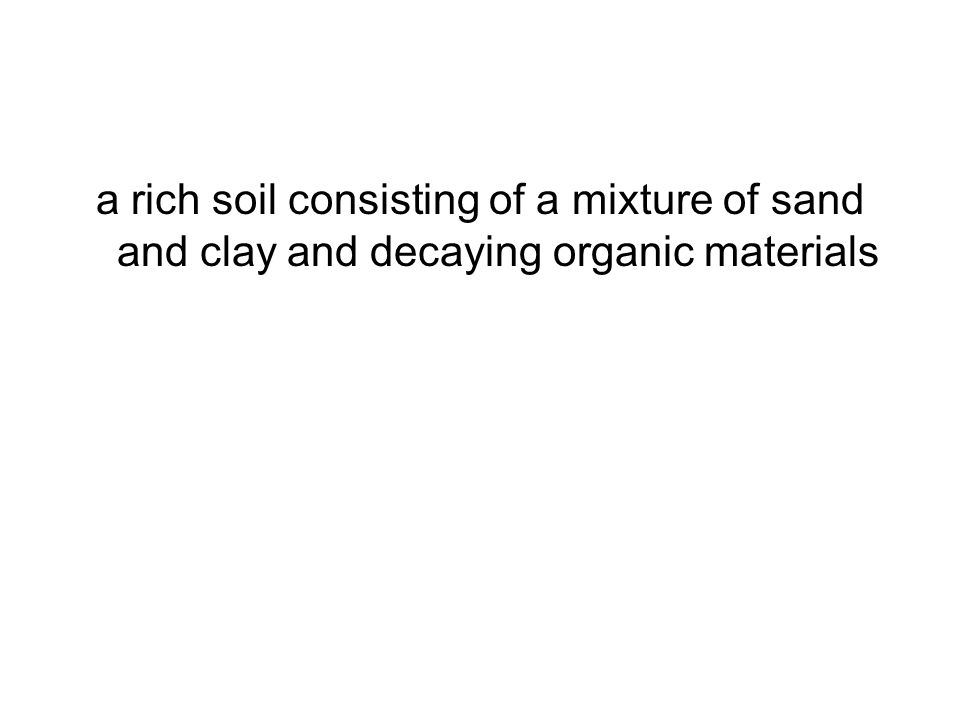 a rich soil consisting of a mixture of sand and clay and decaying organic materials