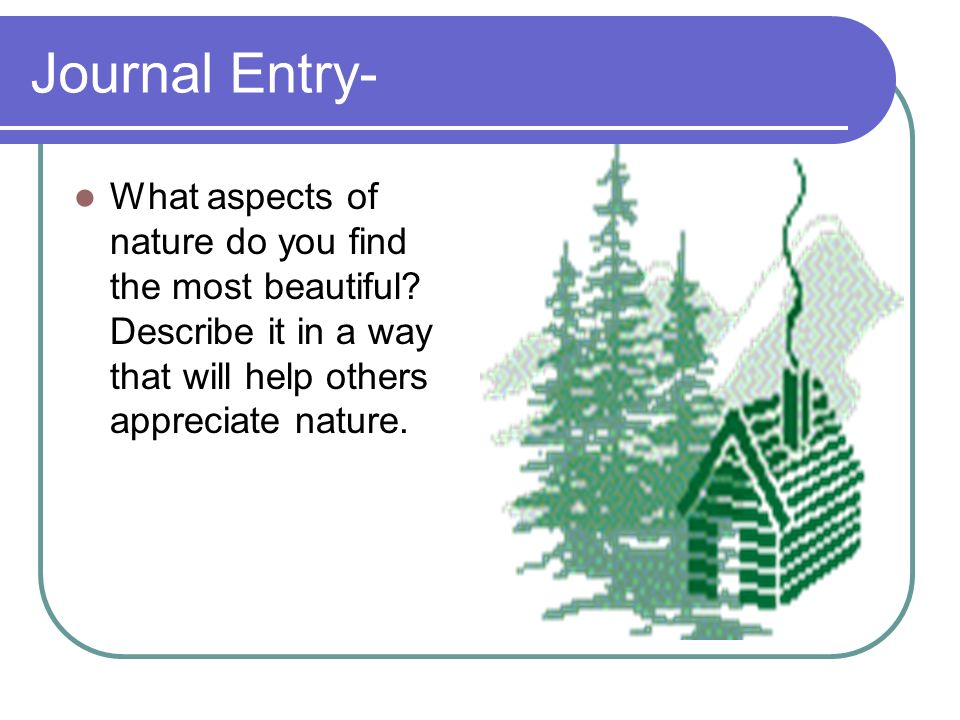 Journal Entry- What aspects of nature do you find the most beautiful.