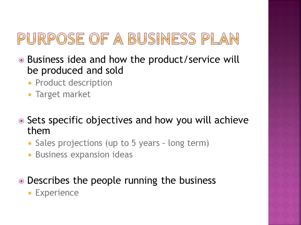 Purpose executive summary business plan