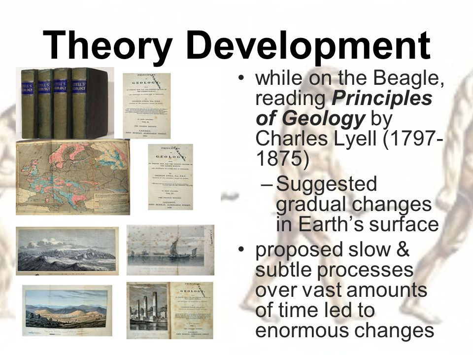 change the seed of evolution essay Evolution definition is  cumulative inherited change in a population of organisms through time leading to the appearance of new forms :.