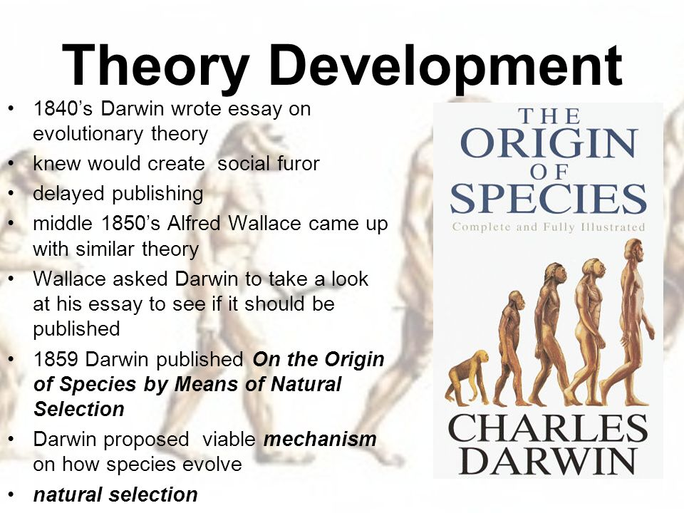 charles darwins evolutionary theory Charles darwin is known as the father of evolution when he was a young man, darwin set out on a voyage on the hms beaglethe ship sailed from england in late december of 1831 with charles darwin aboard as the crew's naturalist.