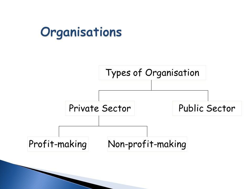 What Are the Different Types of Business Sectors?