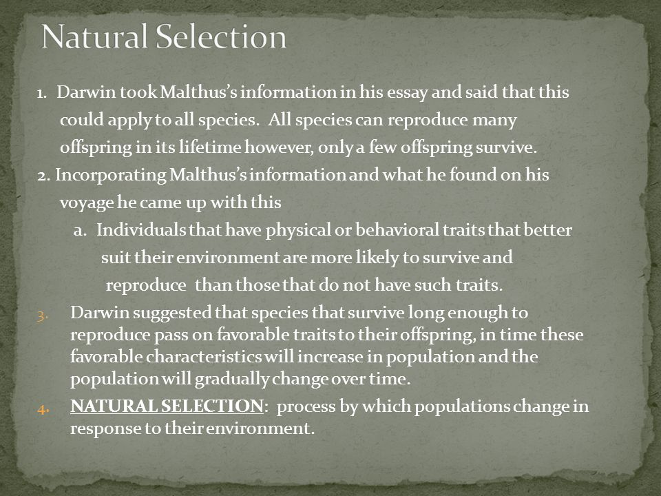 theory of evolution objectives ppt  13 natural selection