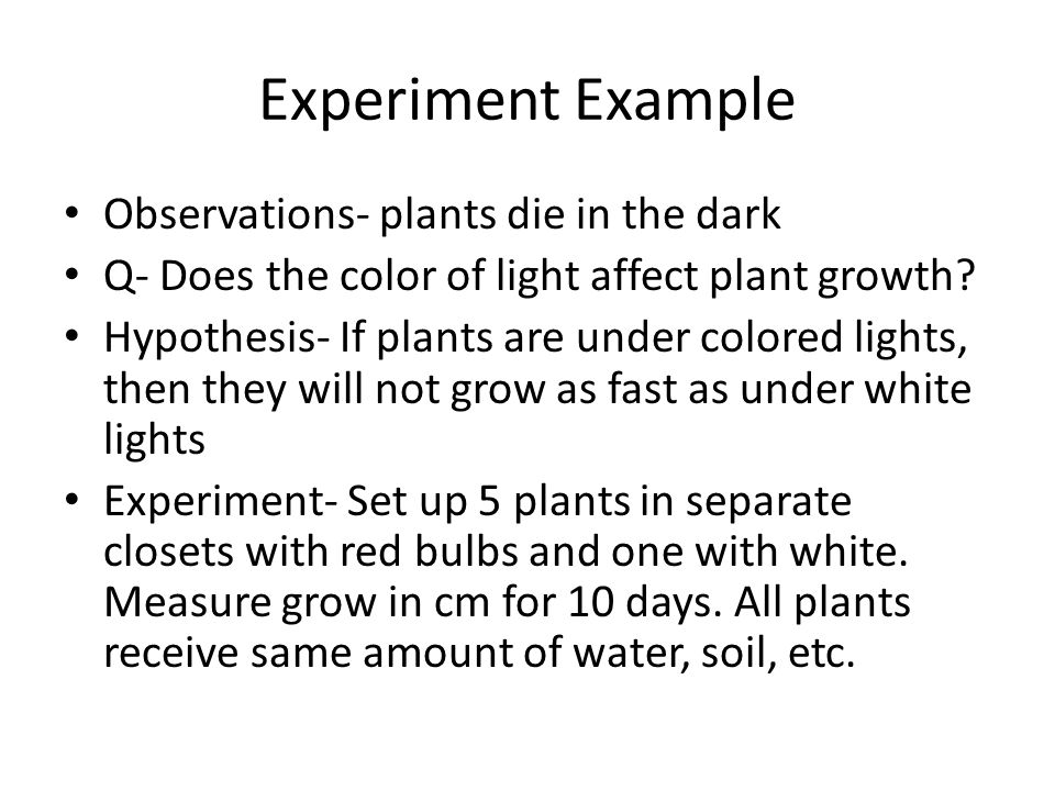 how does the color black affect plant growth essay Plant seeds originally come in four different colors blue , red , yellow and plain    while you can tell what color of plant the seed will grow into by  a healthy  state by curing it of any maladies that might be affecting it.