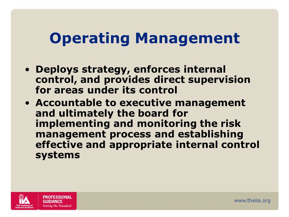 Operating Management Deploys strategy, enforces internal control, and provides direct supervision for areas under its control.