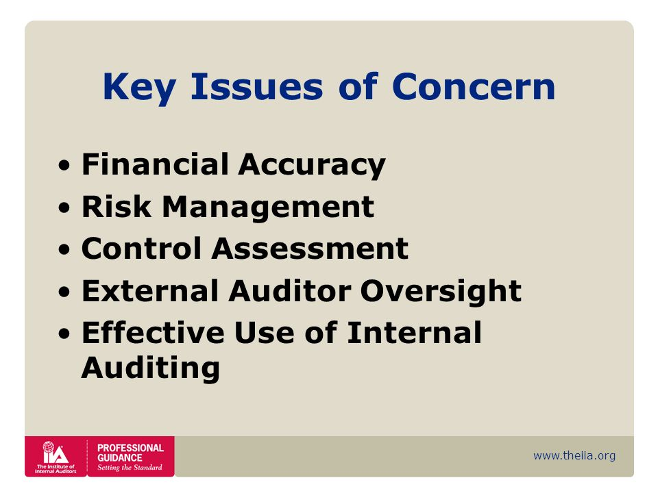Key Issues of Concern Financial Accuracy Risk Management