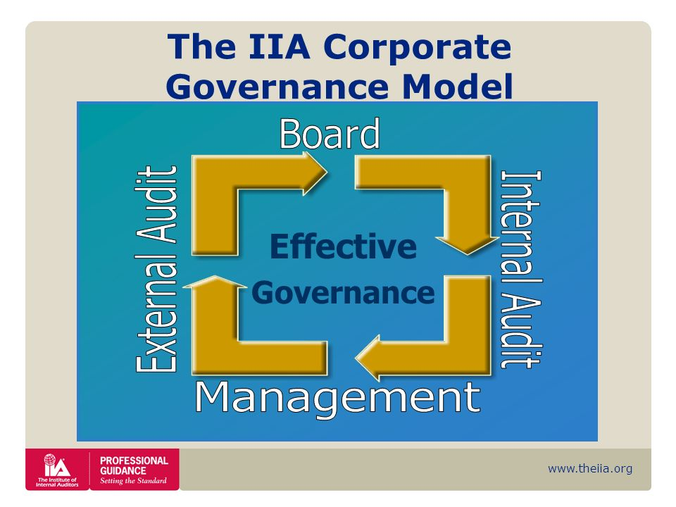 The IIA Corporate Governance Model