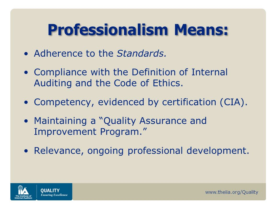 Professionalism Means: