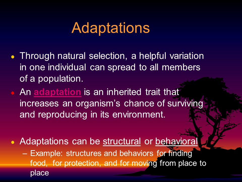 adaptation behavior of the coastal population Environment and behavior trust on coastal climate change adaptation planning such as future changes in population, budgets, political.