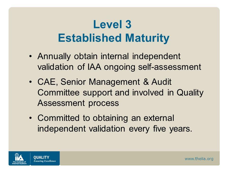 Level 3 Established Maturity