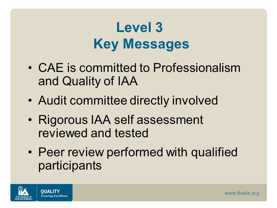 Level 3 Key MessagesCAE is committed to Professionalism and Quality of IAA. Audit committee directly involved.