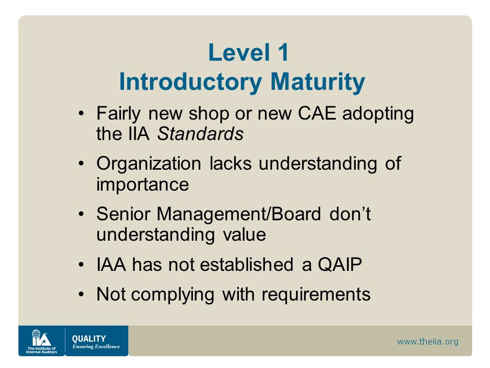 Level 1 Introductory Maturity