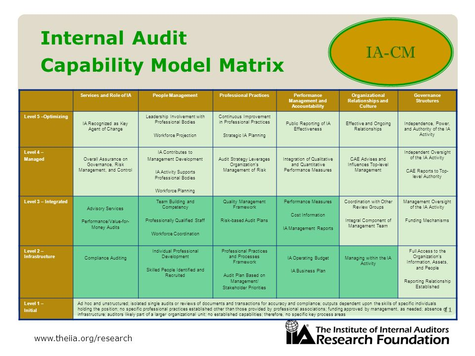 Internal Audit Capability Model Matrix