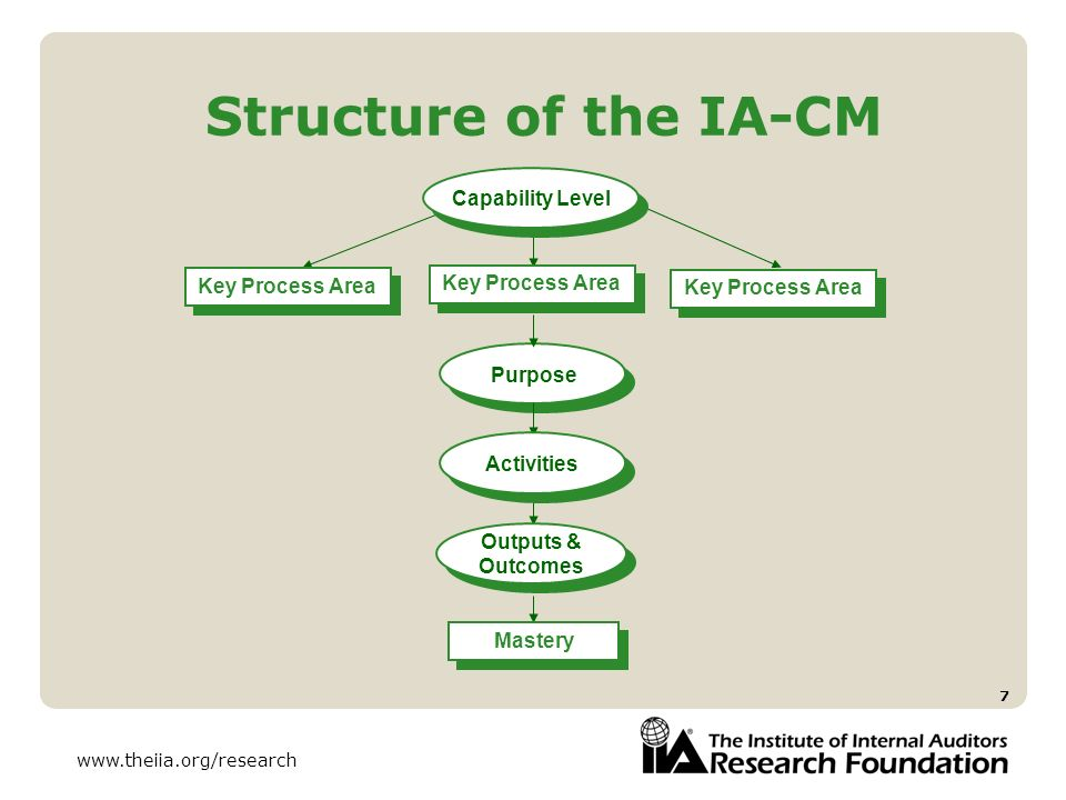 Structure of the IA-CM Capability Level Key Process Area
