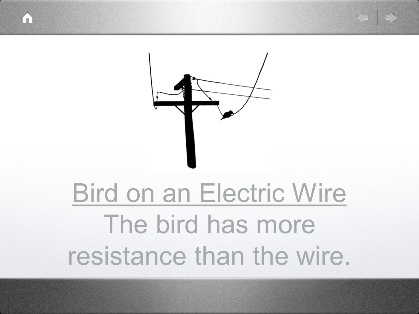 Bird on an Electric Wire The bird has more resistance than the wire.