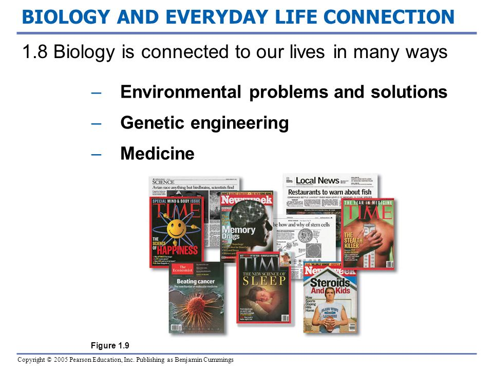 biology in everyday life Usage of science in everyday life  i'm into biology scientists have served humanity the most, i think not any other field has been this much useful to humanity.