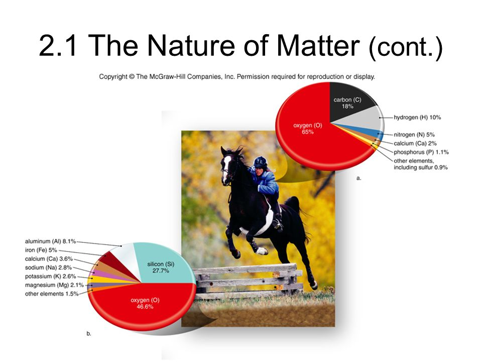 2.1 The Nature of Matter (cont.)