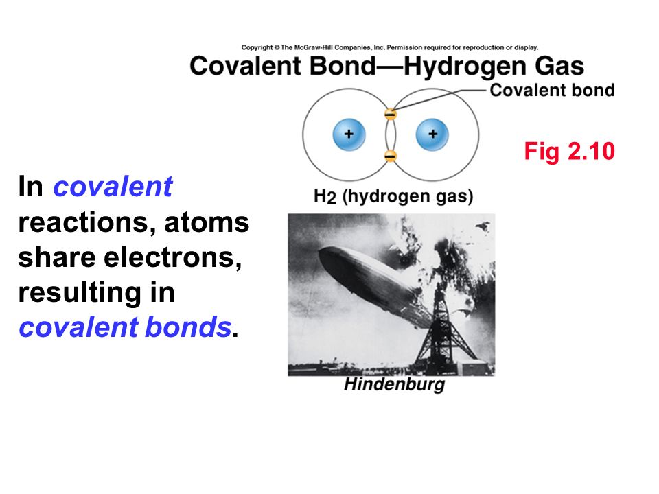 Fig 2.10 In covalent reactions, atoms share electrons, resulting in covalent bonds.