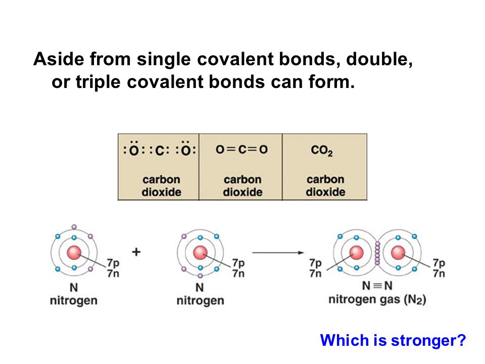 Aside from single covalent bonds, double, or triple covalent bonds can form.