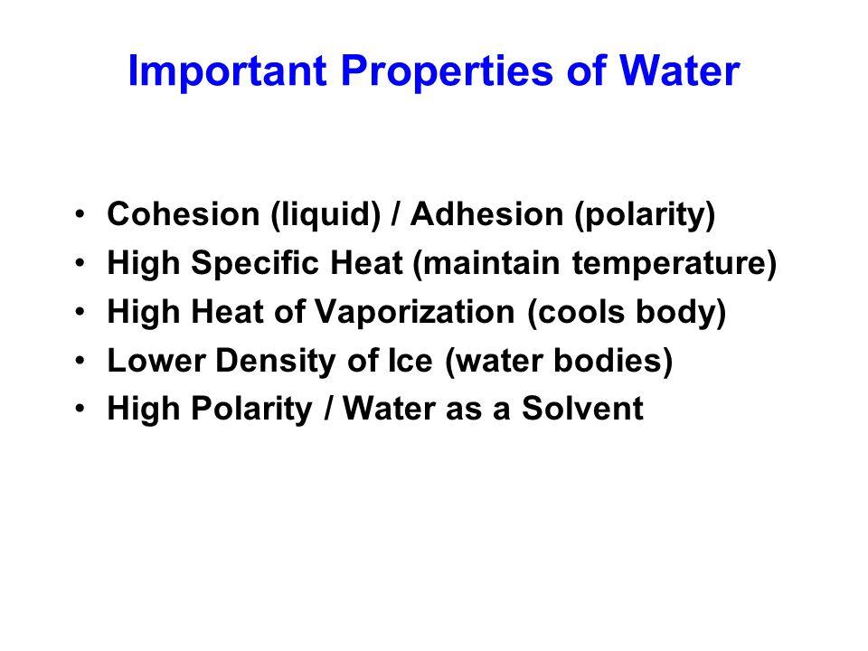 Important Properties of Water