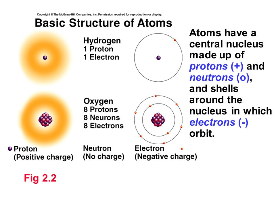 Atoms have a central nucleus made up of protons (+) and neutrons (o), and shells around the nucleus in which electrons (-) orbit.