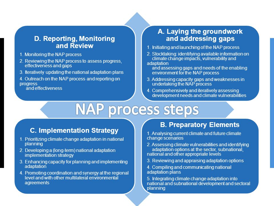 NAP process steps A. Laying the groundwork and addressing gaps