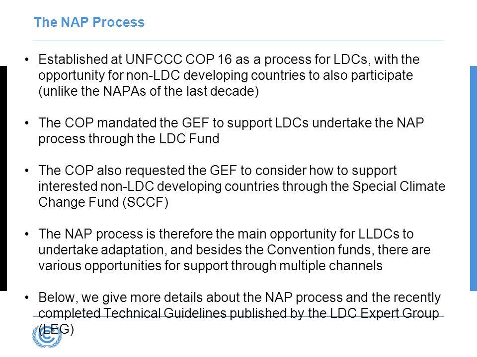 The NAP Process
